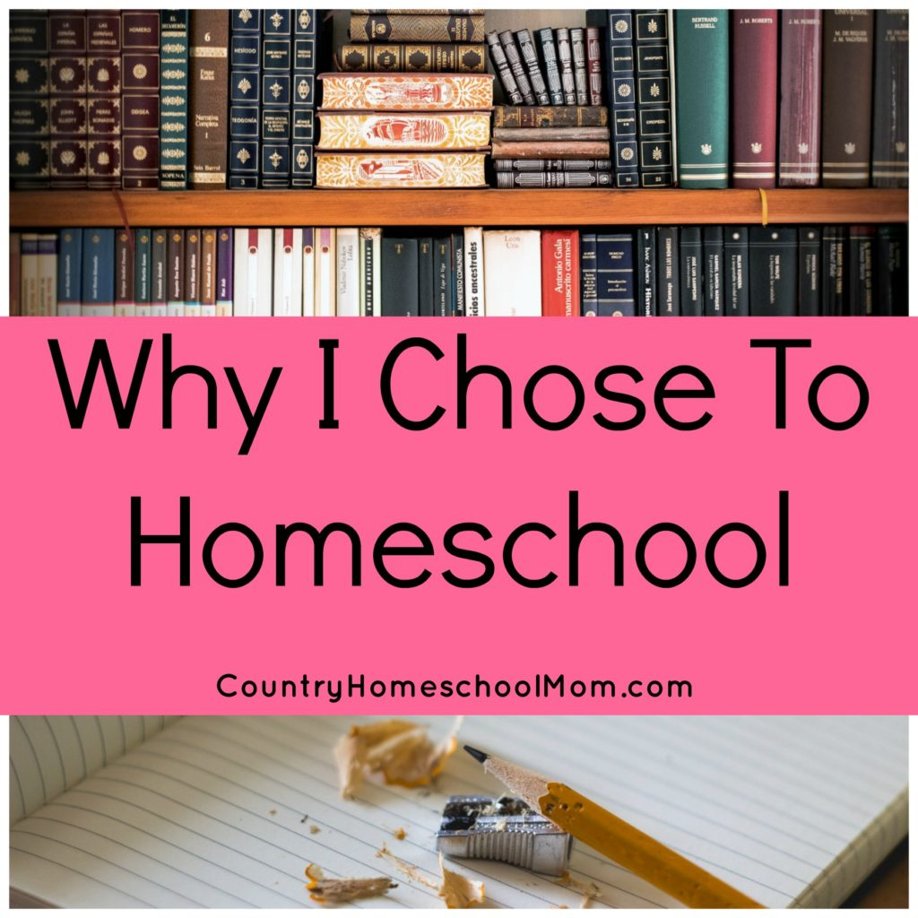 The Reasons Why I Chose to Homeschool