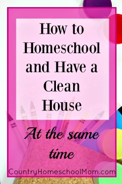 How to Homeschool and Have A Clean House